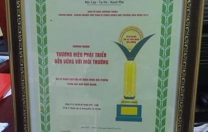 Việt-Sing 3 năm liên tiếp giành Thương hiệu Phát triển bền vững